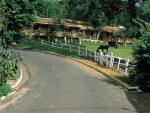 Hotel Fazenda Colina Verde, São Pedro