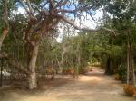 Village Mata Encantada