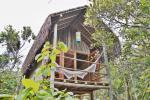 Casas na Árvore - Mata Encantada