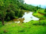 Hotel Estância Atibainha -trilha ecológica