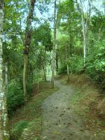Trilha Ecológica - Hotel Estância Atibainha