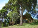 Quinta dos Pinhais - Morada Mantiqueira