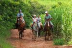 Recanto Alvorada Eco Resort - cavalgada