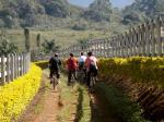 Passeios de Bike - Tiradentes