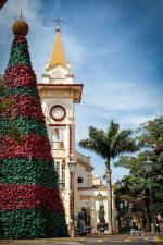Socorro - Arvore de Natal gigante - crédito Tuda Nicoletti