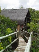 Casa na Árovre com mirante - Resort Mata Encantada (BA)