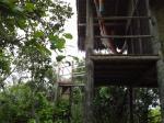 Casa na Árvore com mirante - Village Mata Encantada (BA)