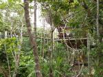 Casa na Árvore com mirante - Resort Village Mata Encantada (BA)