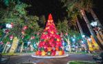 Luzes de Natal - Socorro (SP) -crédito Shane Glen